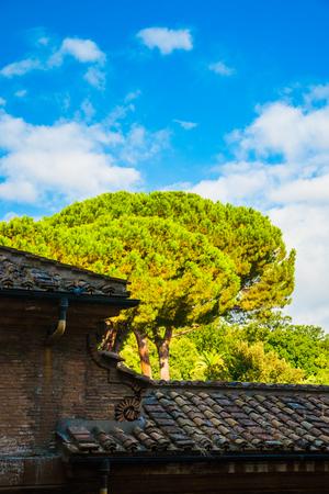 vatican: Park in Vatican museums