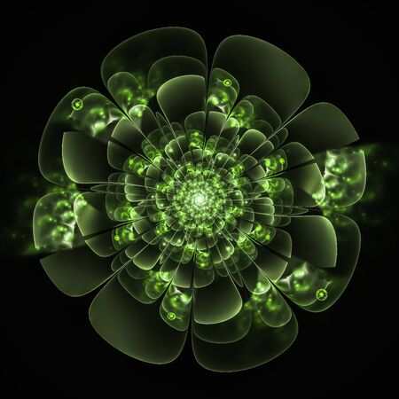 macro flower: Macro closeup of fractal flower, digital artwork for creative graphic design
