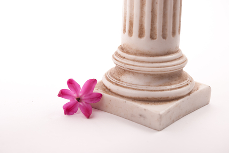 3d temple: Classical column with flower isolated on white background, conceptual metaphor for love, beauty, and affection.