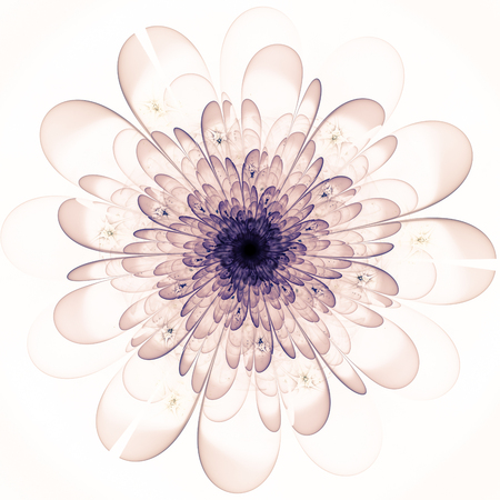 Macro closeup of fractal flower, digital artwork for creative graphic design Stock Photo - 55246868