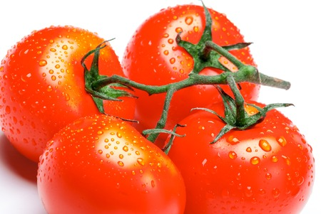 Red  ripe tomatoes on a brunch isolated on a white background. Stock Photo