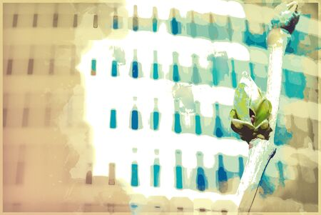 background texture metaphor: Vivid photo of green buds against office building in spring. Conceptual metaphor of innovation, startup and economic growth. Vintage painting, background illustration, beautiful picture, texture Stock Photo