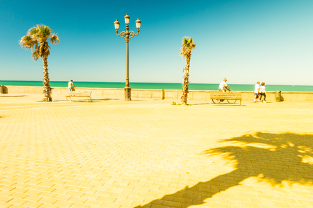 Palm trees along the coast in Cadiz at beautiful sunny day. Image of tropical vacation and sunny happiness. Filtered vintage photo. Stock Photo