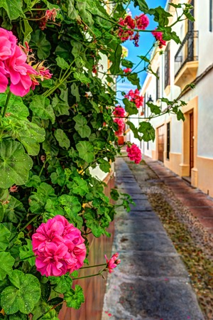Beautiful White Walls Decorated with Colorful Flowers - Old European Town, Cordoba, Spain