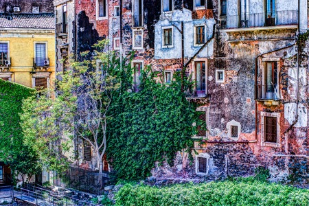 red vintage old brick wall with windows and green ivy Stock Photo
