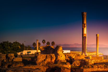 Ancient ruins at Carthage, Tunisia with the Mediterranean Sea in distance.