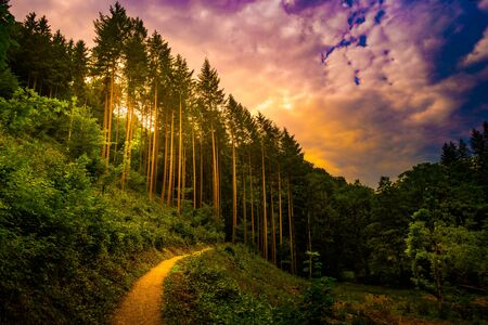 Beautiful landscape with pathway in the mountains forest at sunset. Hiking path in breathtaking panoramic view, inspirational summer landscape in forest. Walking footpath or biking path, dirt road. Reklamní fotografie