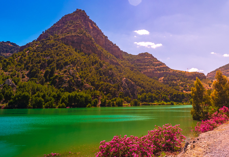Landscape Caminito del Rey hills in Gorge canyon, Andalusia, Spain. Beautiful pink flowers against water and hills. Reklamní fotografie