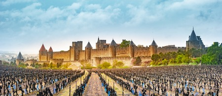 View of the medieval city of Carcassonne from a vineyard, Languedoc-Roussillon, Aude, Occitanie, France Banque d'images