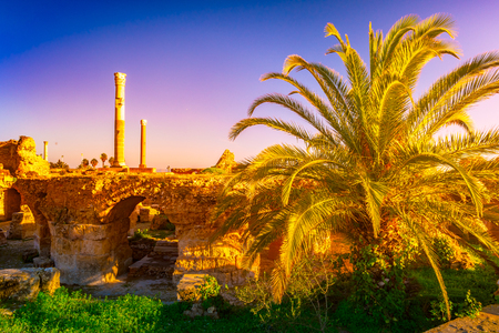 Beautiful view with ancient remains of Carthage and tropical landscape. Tunis, Tunisia.
