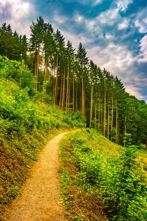 Beautiful landscape with pathway in the mountains forest at sunset. Hiking path in breathtaking panoramic view, inspirational summer landscape in forest. Walking footpath or biking path, dirt road. Stock fotó