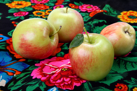 Still life with apples  photo