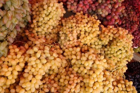 ripen: Bunch of ripen grapes - photography of grapes clusters