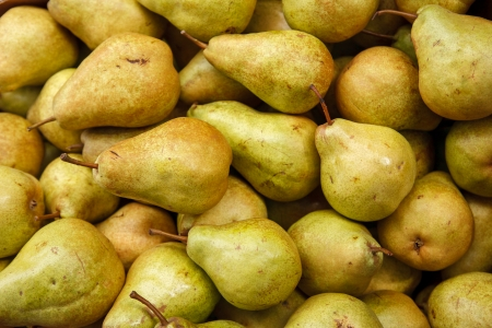 beauteous: Pear harvest season - HQ photo of pears Stock Photo