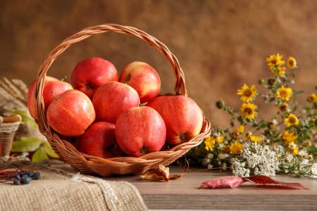 beauteous: Harvesting and storing apples - photo of ripe apples in a wicker basket