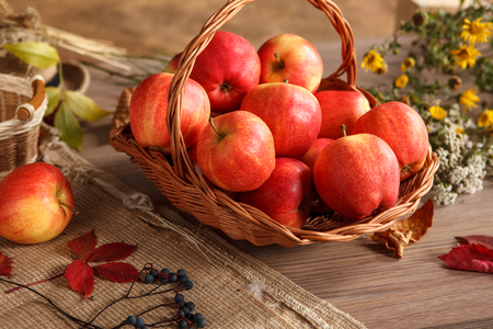 beauteous: Apple harvest and fantastic fall season in full swing - HQ photo of ripe apples in a wicker basket