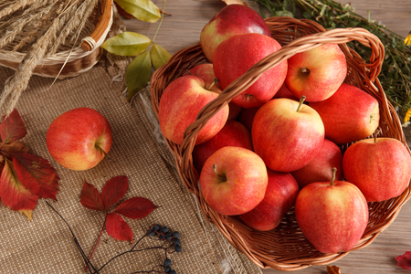 beauteous: Still life with basket of apples - photo of ripe apples in a wicker basket