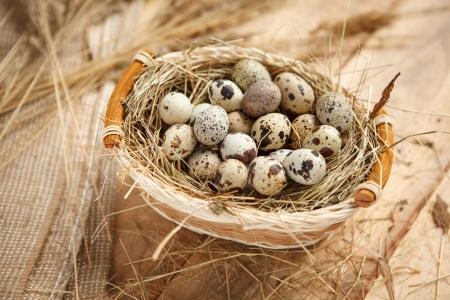 beauteous: Raw quail eggs - HQ photo of quail eggs in a wicker basket