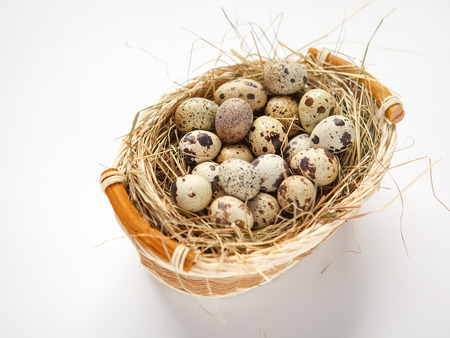 beauteous:  Basket of quail eggs - studio photography of quail eggs in a wicker basket - on white background