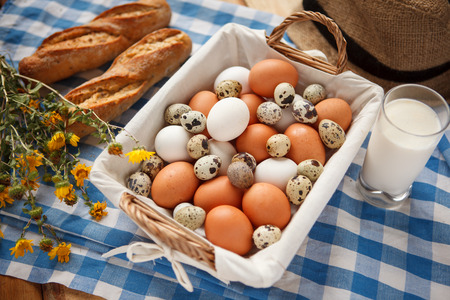beauteous: Quail eggs, more nutritious than chicken eggs - HQ photo of raw eggs   fresh milk at the table Stock Photo