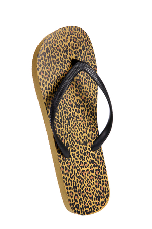 colorific: Beach flip flops - Brown leopard - object photography in a studio of women s beach shoes - isolated on white background