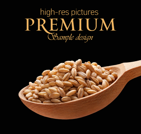 pearl barley: Pearl barley in a wooden spoon -  cereal on wooden spoons isolated on black background with place for your text