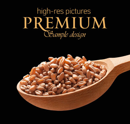 wooden spoon: Wheat in a wooden spoon - cereal on wooden spoons isolated on black background with place for your text
