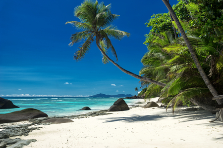 Beautiful sunny tropical beach on the island paradise outdoors photography of picturesque Seychelle islands
