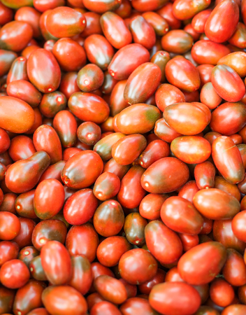 beauteous: Red natural tomatoes in the basketful. Fresh organic tomatoes background texture. close-up. Selective focus.