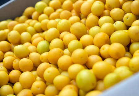 alycha: Yellow cherry plums in basket, close-up. Selective focus.