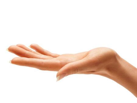 여자의 손 기호 흰색 배경에 고립입니다. 최대 팜을 닫습니다. 스톡 콘텐츠
