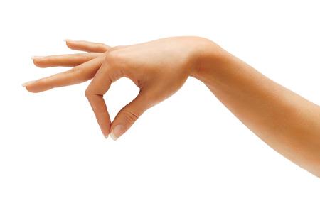 manos: Mujer asimiento de la mano algo aislado en el fondo blanco. Producto de alta resolución. De cerca