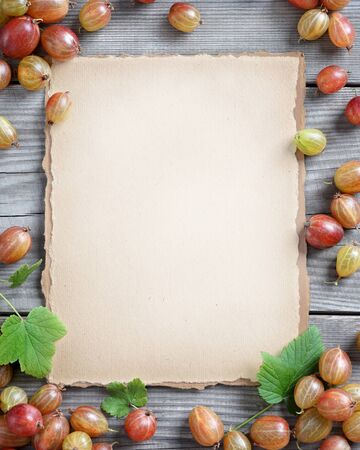 old paper background: Organic berries background. Old paper with fresh gooseberry on wooden table. Copy space, top view, high resolution product. Harvest concept.