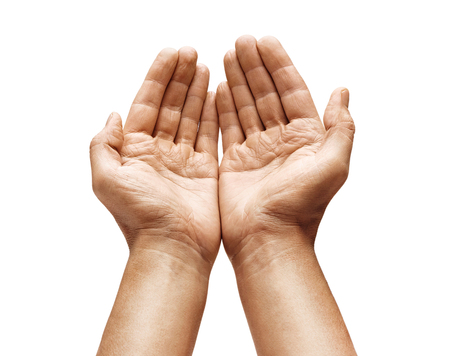 Primo piano delle mani a coppa dell'uomo mostra qualcosa su sfondo bianco. Palme in alto. Prodotto ad alta risoluzione