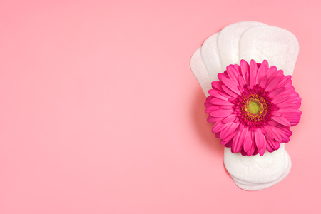 Daily sanitary napkins with gerbera flower on pink background. Concept of critical days, menstruation