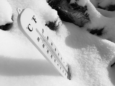 street thermometer with a temperature of Celsius and Fahrenheit in the snow next to a young pine in winter or spring Banque d'images - 119510968