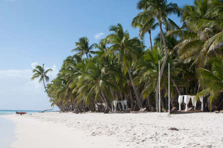 Sun loungers for relaxing on the beach of Saona island in the Dominican Republic 写真素材