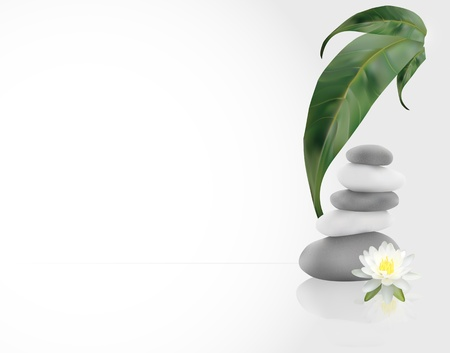 water lilly: SPA Background with leafs, stones and water lilly Illustration