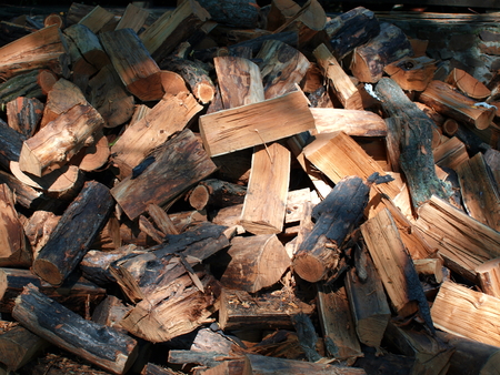 barbecues: large pile of firewood for barbecues and picnics on the nature