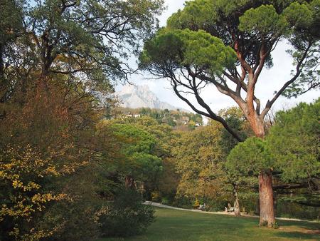 vorontsov: Crimea, Vorontsov Park, views of Mount Ai-Petri