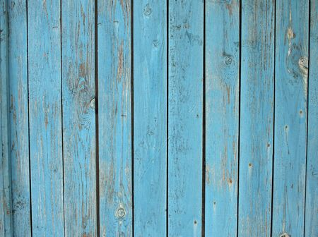 grunge wood: Old wooden planks standing upright with a shabby blue paint all over the field image for use as a background or wallpaper