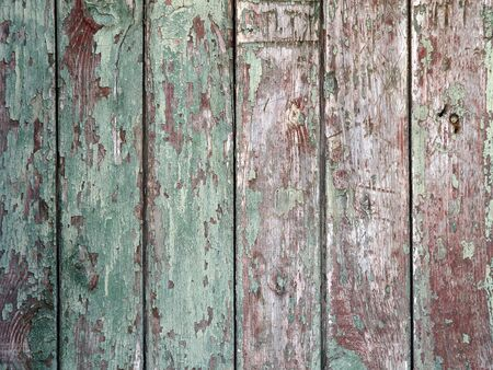 mangy: Detail of an old  vertical wooden fence with the remains of green paint on the mangy dark boards with cracks for use as background or wallpaper