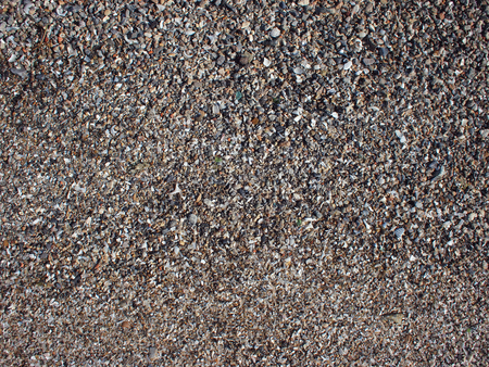 be wet: Top view of wet sand and small stones with fragments of shells on the beach closeup. It can be used as a background.