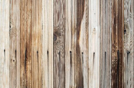 wood panel: Bright background of wooden planks with natural wood texture closeup for use as a wallpaper
