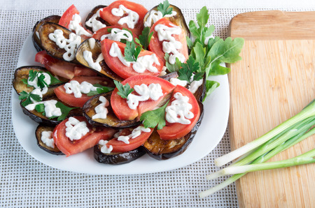 Vegetarian meal of stewed eggplant, fresh tomatoes, mozzarella cheese and herbs