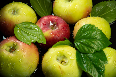 Apples and leaves are covered with drops of water after washing