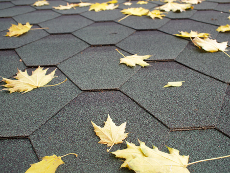 Hexagonal tiles of roofing material and yellow maple leaves close-up