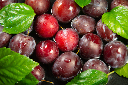 Top view of fresh plums in water for washing close-up on a dark background