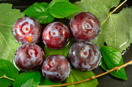 Top view of a wet  purple plums with water drops on a background of leaves Stock Photo