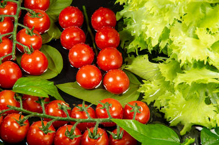 Fresh cherry tomatoes and lettuce are washed in water for cooking. Top view on a dark background. Stock Photo